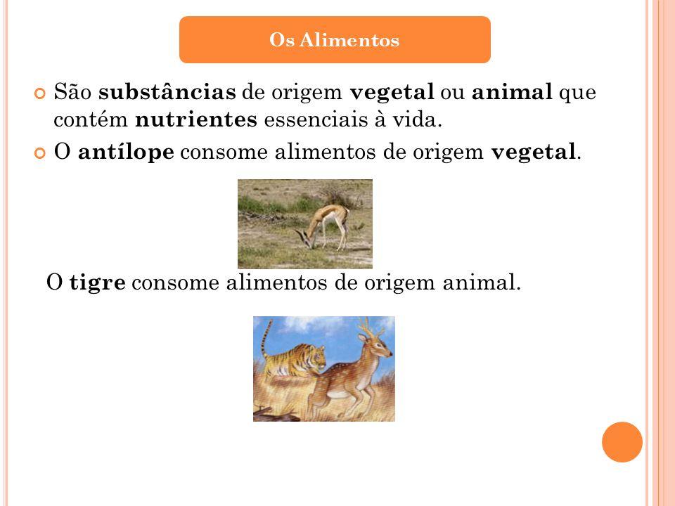 São substâncias de origem vegetal ou animal que contém nutrientes essenciais à vida. O antílope consome alimentos de origem vegetal. O tigre consome a