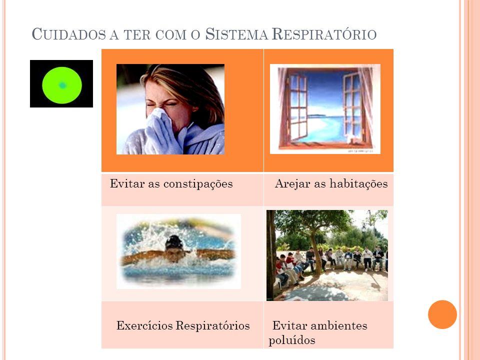 C UIDADOS A TER COM O S ISTEMA R ESPIRATÓRIO Evitar as constipações Arejar as habitações Exercícios Respiratórios Evitar ambientes poluídos