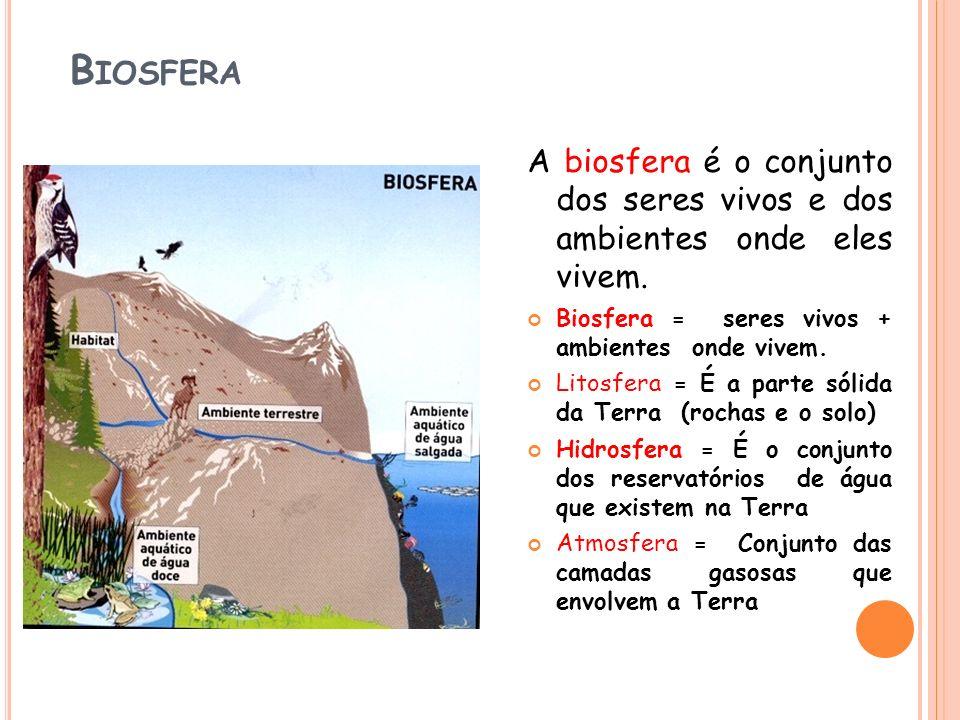 B IOSFERA A biosfera é o conjunto dos seres vivos e dos ambientes onde eles vivem. Biosfera = seres vivos + ambientes onde vivem. Litosfera = É a part
