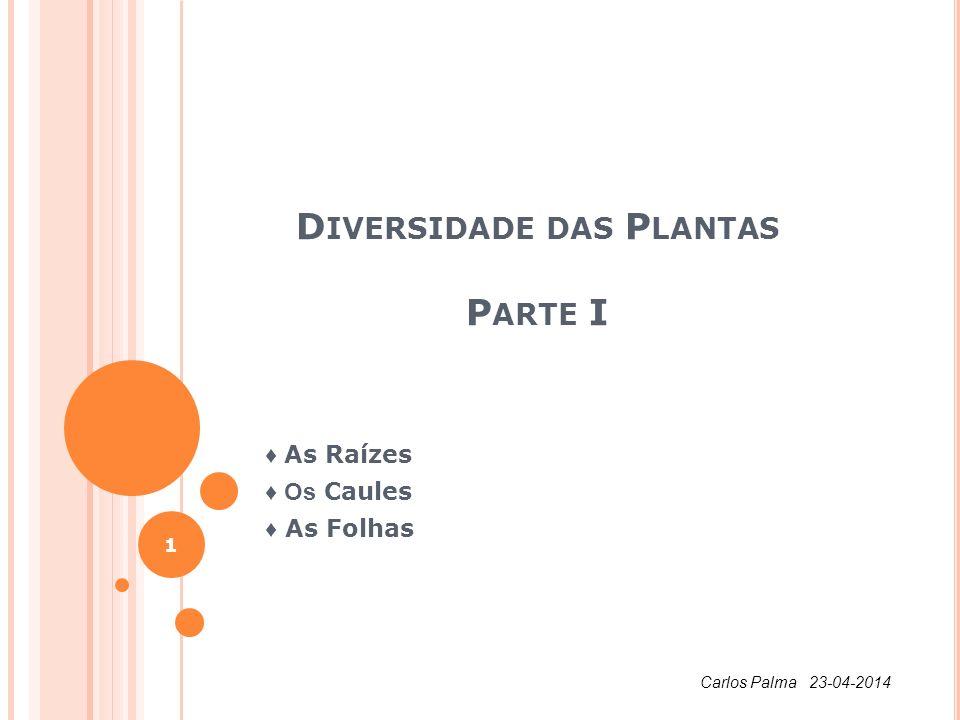 D IVERSIDADE DAS P LANTAS P ARTE I As Raízes Os Caules As Folhas 1 Carlos Palma 23-04-2014