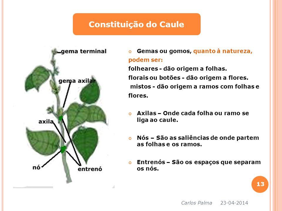 Gemas ou gomos, quanto à natureza, podem ser: folheares - dão origem a folhas. florais ou botões - dão origem a flores. mistos - dão origem a ramos co