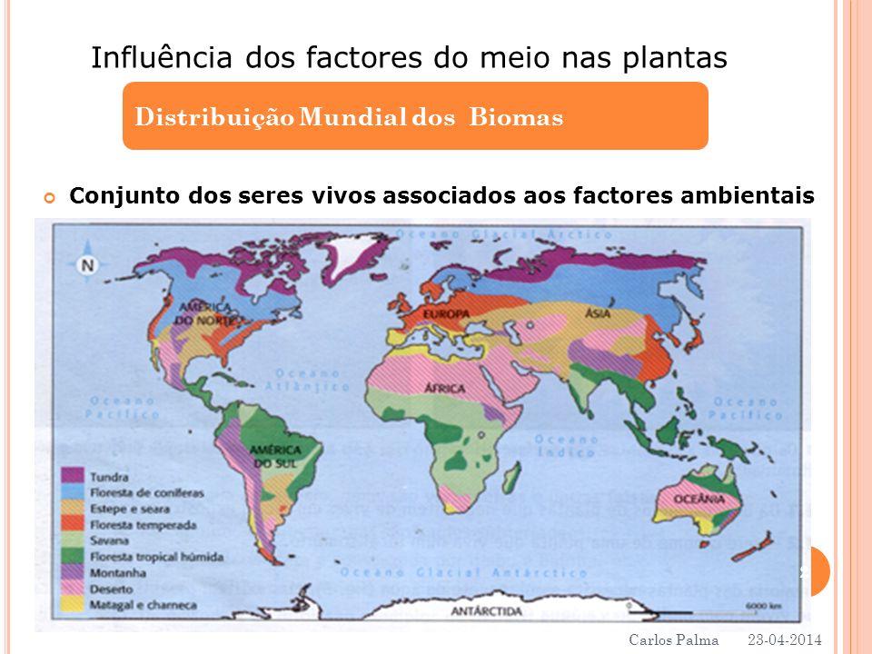 Conjunto dos seres vivos associados aos factores ambientais Distribuição Mundial dos Biomas Influência dos factores do meio nas plantas 23-04-2014 2 C