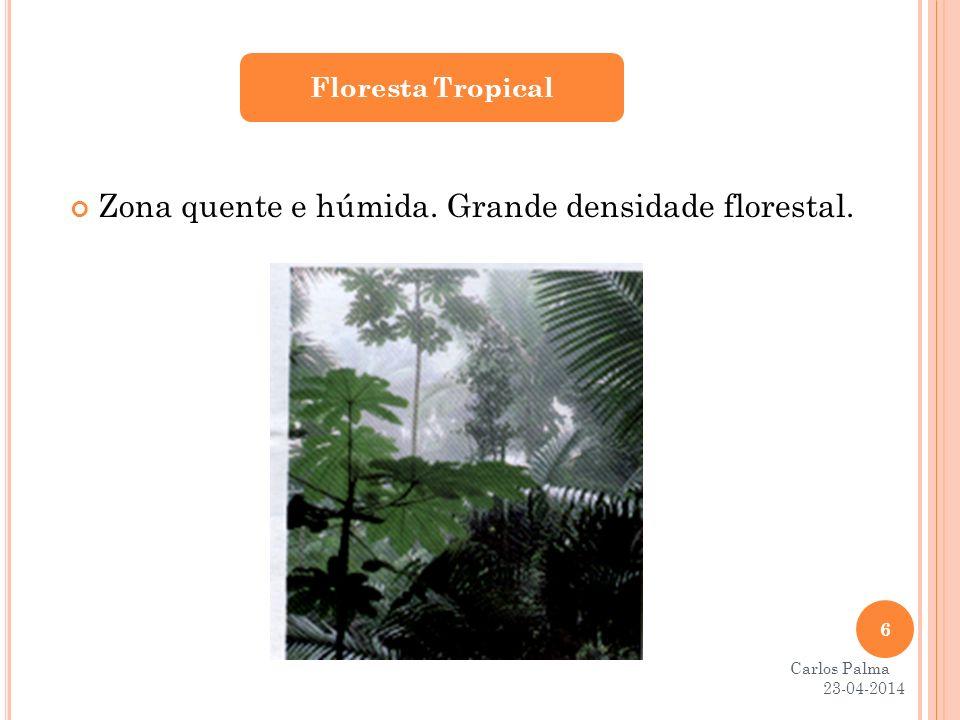 Zona quente e húmida. Grande densidade florestal. Floresta Tropical 23-04-2014 6 Carlos Palma