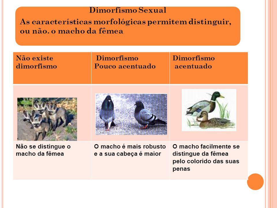 Na época de reprodução dá-se o acasalamento dos animais da mesma espécie para originarem seres vivos semelhantes.