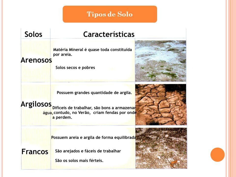 São solos que retêm a água.São solos que perdem facilmente a água.
