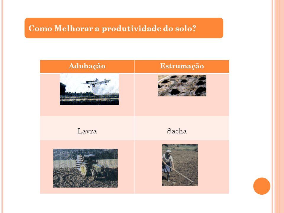 Como Melhorar a produtividade do solo? AdubaçãoEstrumação Lavra Sacha