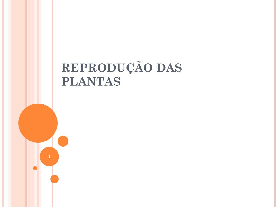 A Flor Constituição da flor hermafrodita 2