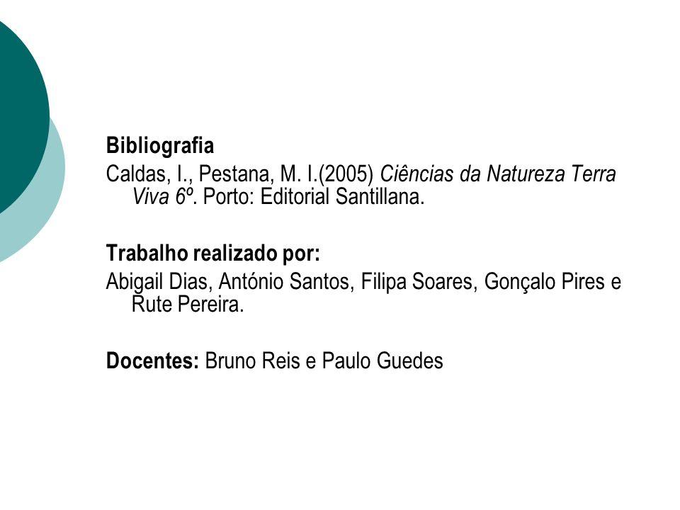 Bibliografia Caldas, I., Pestana, M. I.(2005) Ciências da Natureza Terra Viva 6º. Porto: Editorial Santillana. Trabalho realizado por: Abigail Dias, A