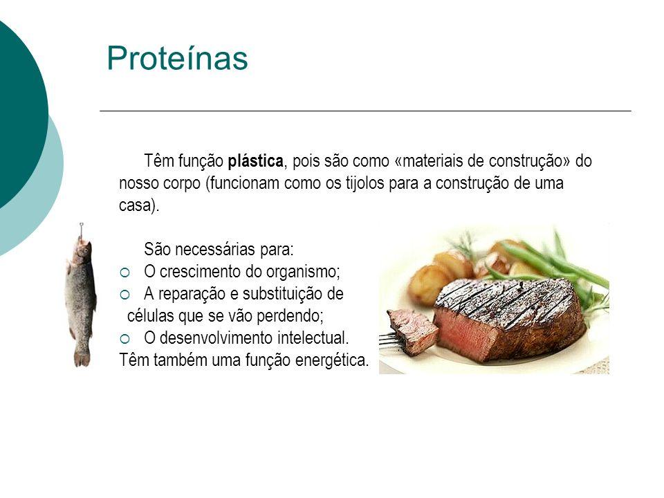Proteínas Têm função plástica, pois são como «materiais de construção» do nosso corpo (funcionam como os tijolos para a construção de uma casa). São n