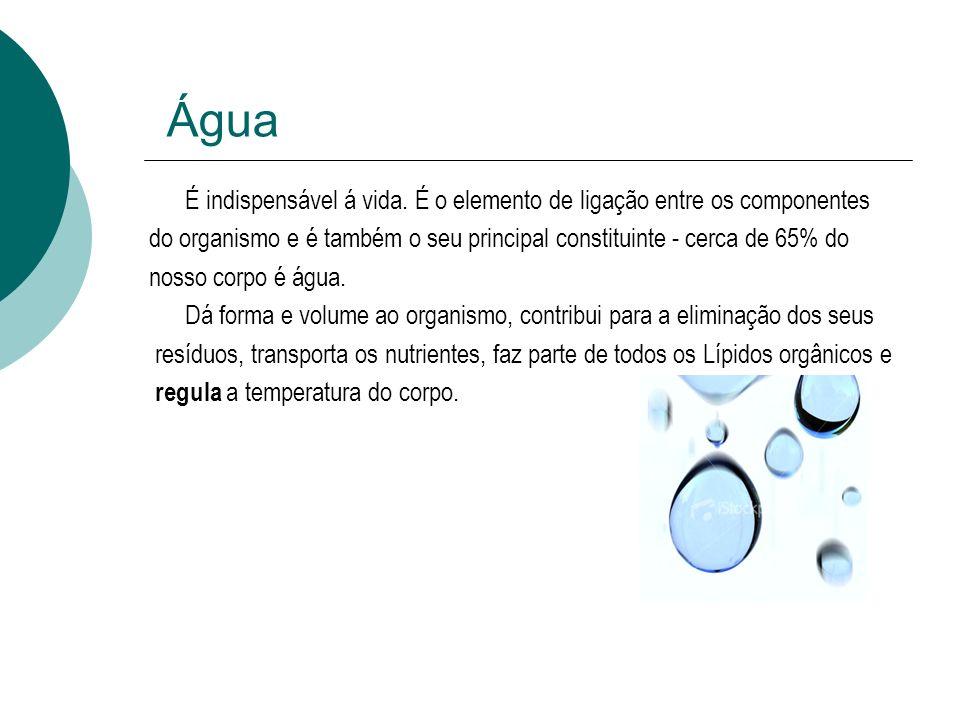 Água É indispensável á vida. É o elemento de ligação entre os componentes do organismo e é também o seu principal constituinte - cerca de 65% do nosso