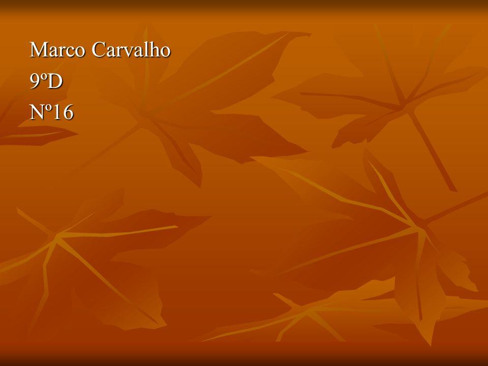 Marco Carvalho 9ºDNº16