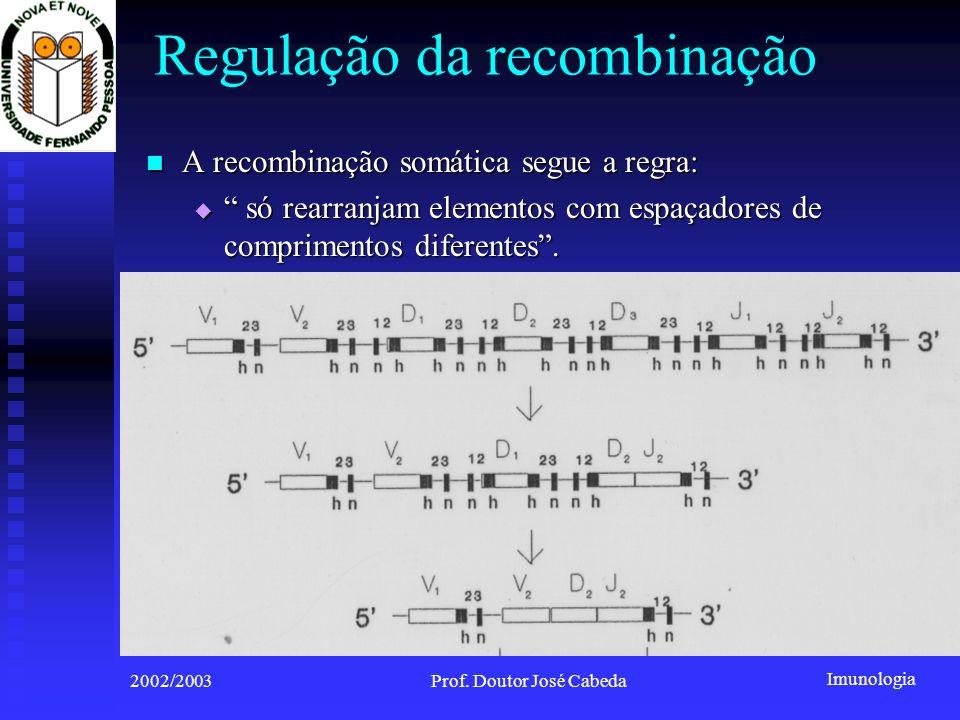 Imunologia 2002/2003Prof. Doutor José Cabeda A recombinação somática segue a regra: A recombinação somática segue a regra: só rearranjam elementos com