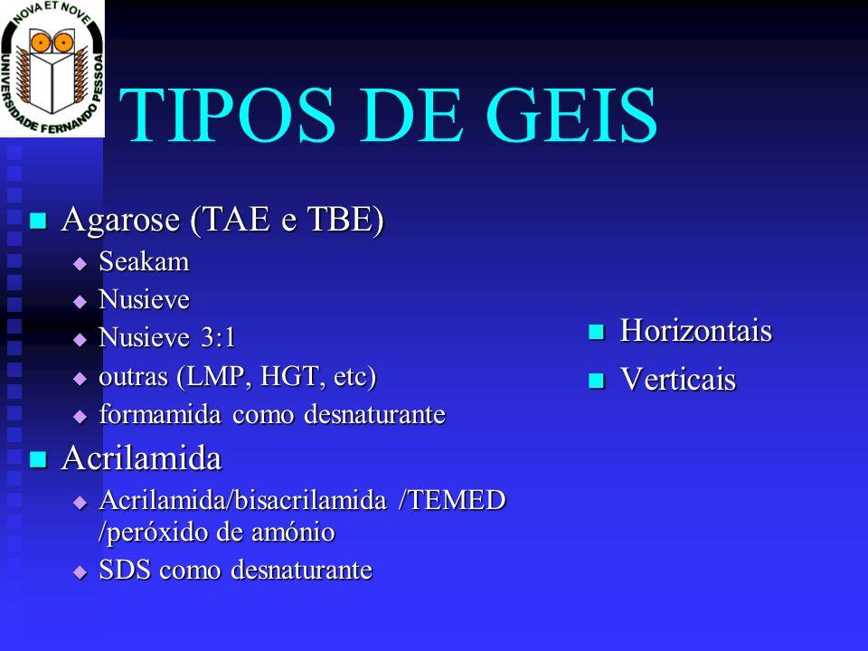 TIPOS DE GEIS Agarose (TAE e TBE) Agarose (TAE e TBE) Seakam Seakam Nusieve Nusieve Nusieve 3:1 Nusieve 3:1 outras (LMP, HGT, etc) outras (LMP, HGT, e