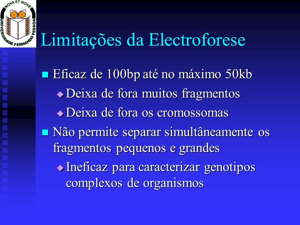 Limitações da Electroforese Eficaz de 100bp até no máximo 50kb Eficaz de 100bp até no máximo 50kb Deixa de fora muitos fragmentos Deixa de fora muitos