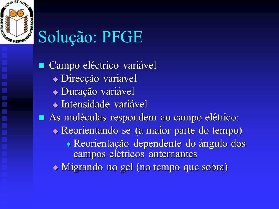 Solução: PFGE Campo eléctrico variável Campo eléctrico variável Direcção variavel Direcção variavel Duração variável Duração variável Intensidade vari