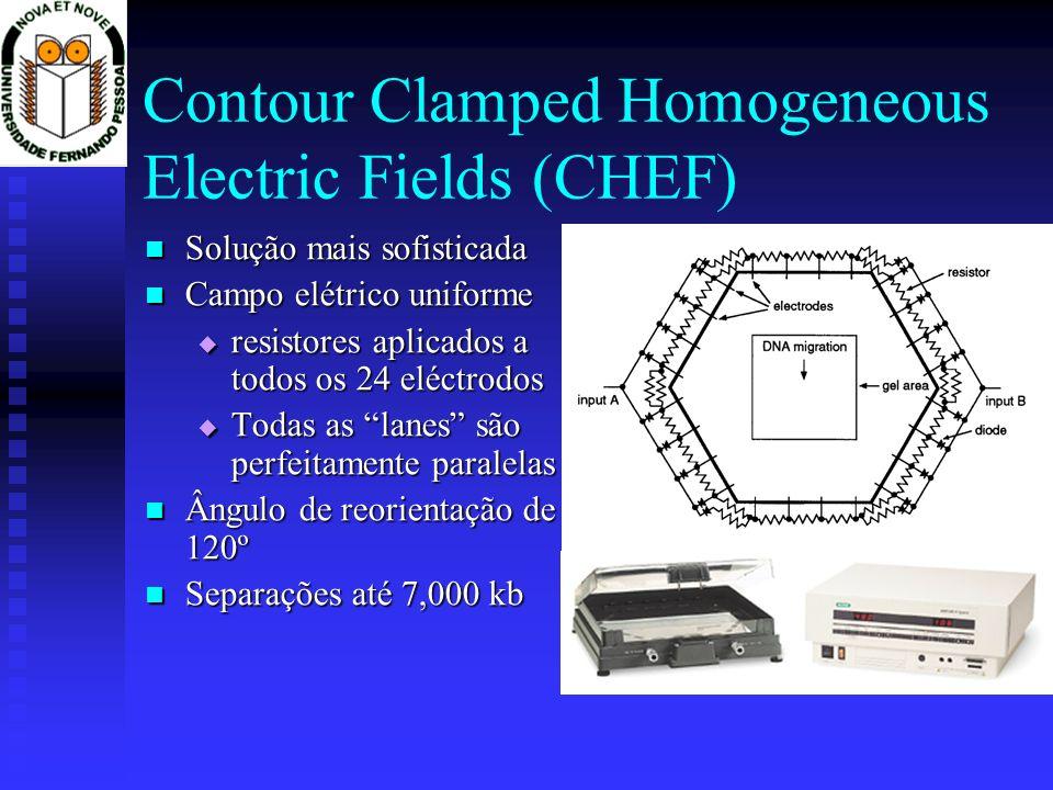 Contour Clamped Homogeneous Electric Fields (CHEF) Solução mais sofisticada Solução mais sofisticada Campo elétrico uniforme Campo elétrico uniforme r