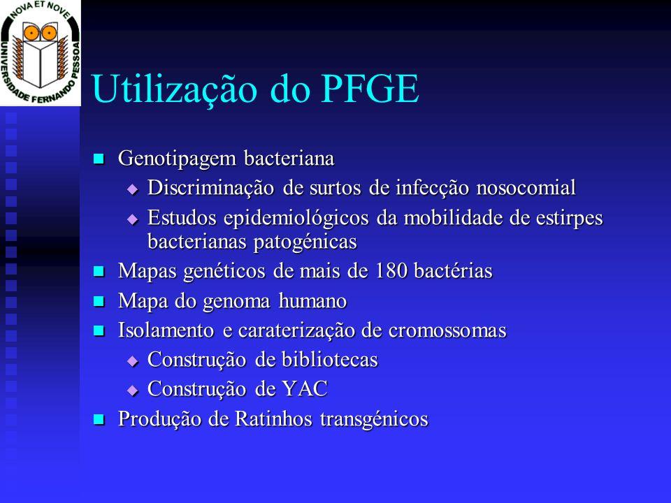 Utilização do PFGE Genotipagem bacteriana Genotipagem bacteriana Discriminação de surtos de infecção nosocomial Discriminação de surtos de infecção no