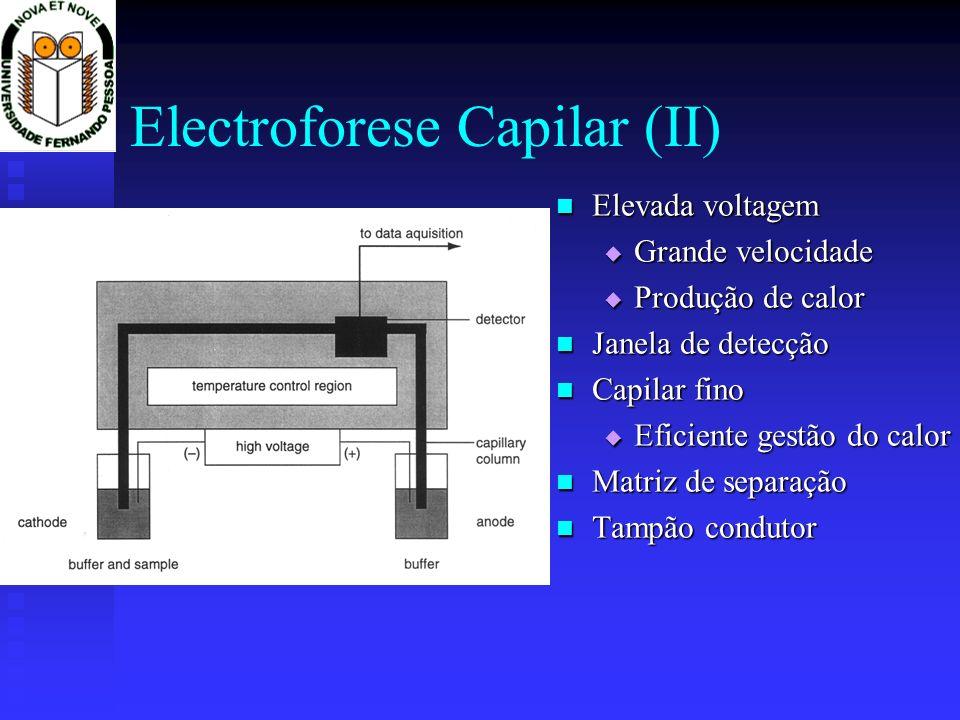 Electroforese Capilar (II) Elevada voltagem Elevada voltagem Grande velocidade Grande velocidade Produção de calor Produção de calor Janela de detecçã