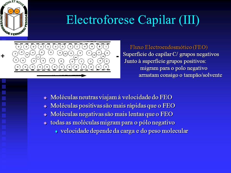 Electroforese Capilar (III) Moléculas neutras viajam á velocidade do FEO Moléculas neutras viajam á velocidade do FEO Moléculas positivas são mais ráp