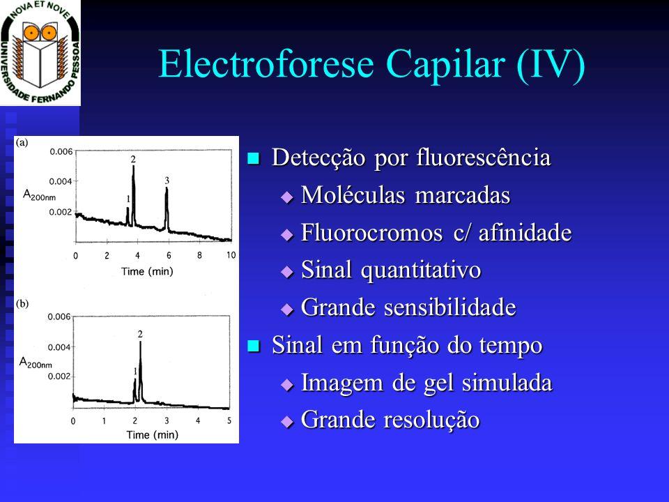 Electroforese Capilar (IV) Detecção por fluorescência Detecção por fluorescência Moléculas marcadas Moléculas marcadas Fluorocromos c/ afinidade Fluor