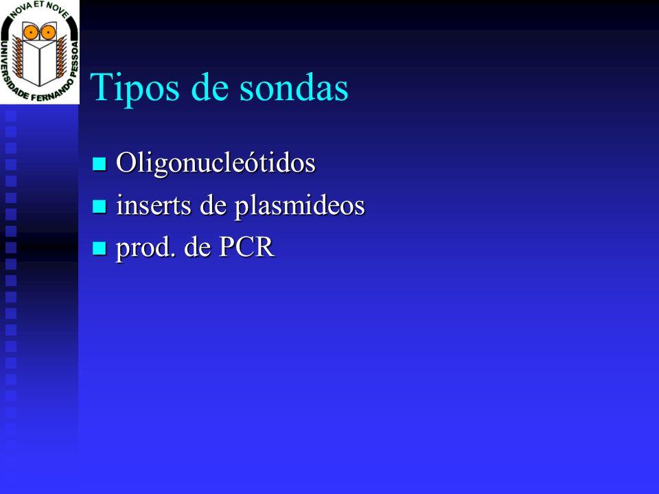 Tipos de sondas Oligonucleótidos Oligonucleótidos inserts de plasmideos inserts de plasmideos prod. de PCR prod. de PCR