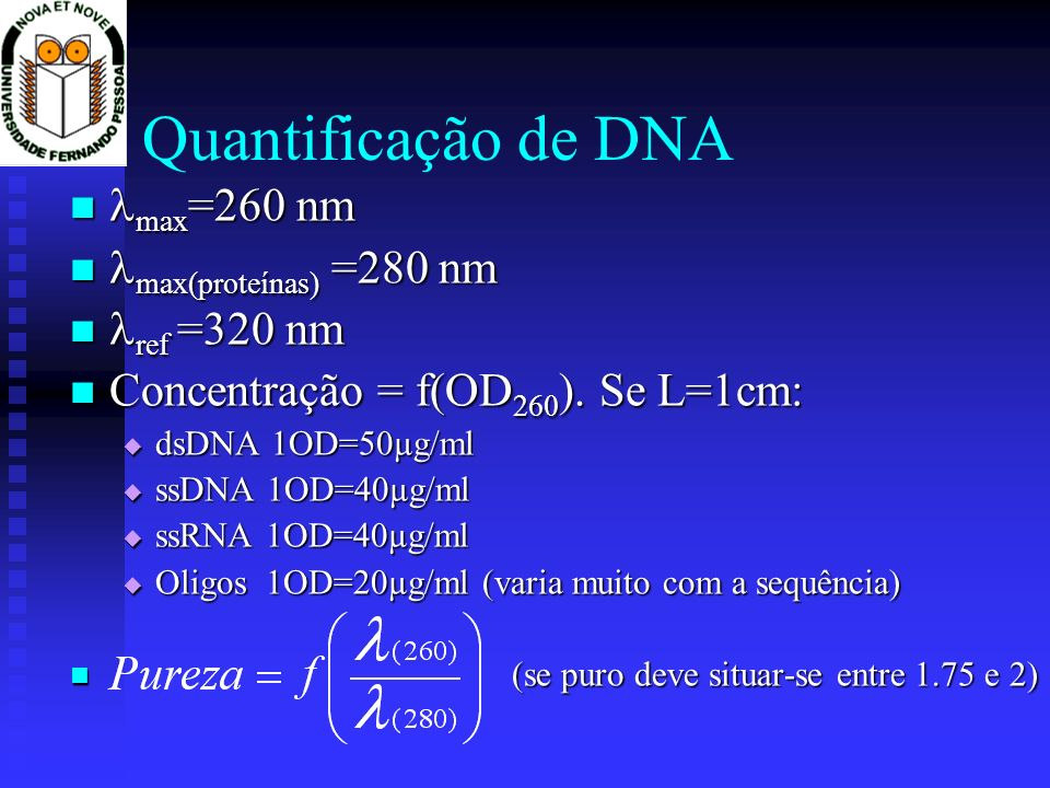 Quantificação e caracterização de ácidos nucleicos Espectrofotometria Espectrofotometria Electroforese Electroforese Revelação dos ácidos nucleicos Revelação dos ácidos nucleicos Fotografia Fotografia Sistemas computadorizados de aquisição de imagem Sistemas computadorizados de aquisição de imagem Quantificação de bandas em geis Quantificação de bandas em geis Reacções de restrição Reacções de restrição Sistemas R/M Sistemas R/M Montar uma reacção de restrição Montar uma reacção de restrição