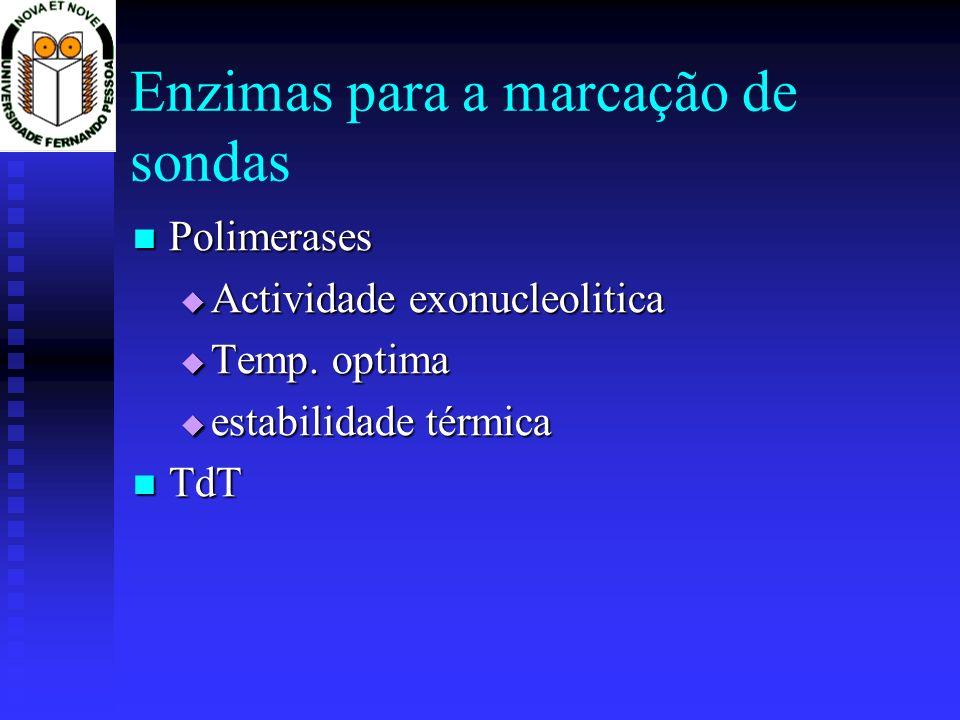 Enzimas para a marcação de sondas Polimerases Polimerases Actividade exonucleolitica Actividade exonucleolitica Temp. optima Temp. optima estabilidade