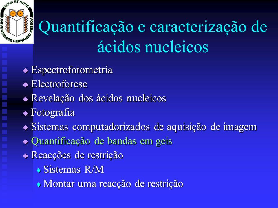 Quantificação e caracterização de ácidos nucleicos Espectrofotometria Espectrofotometria Electroforese Electroforese Revelação dos ácidos nucleicos Re