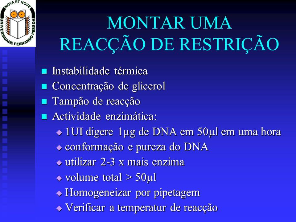 MONTAR UMA REACÇÃO DE RESTRIÇÃO Instabilidade térmica Instabilidade térmica Concentração de glicerol Concentração de glicerol Tampão de reacção Tampão