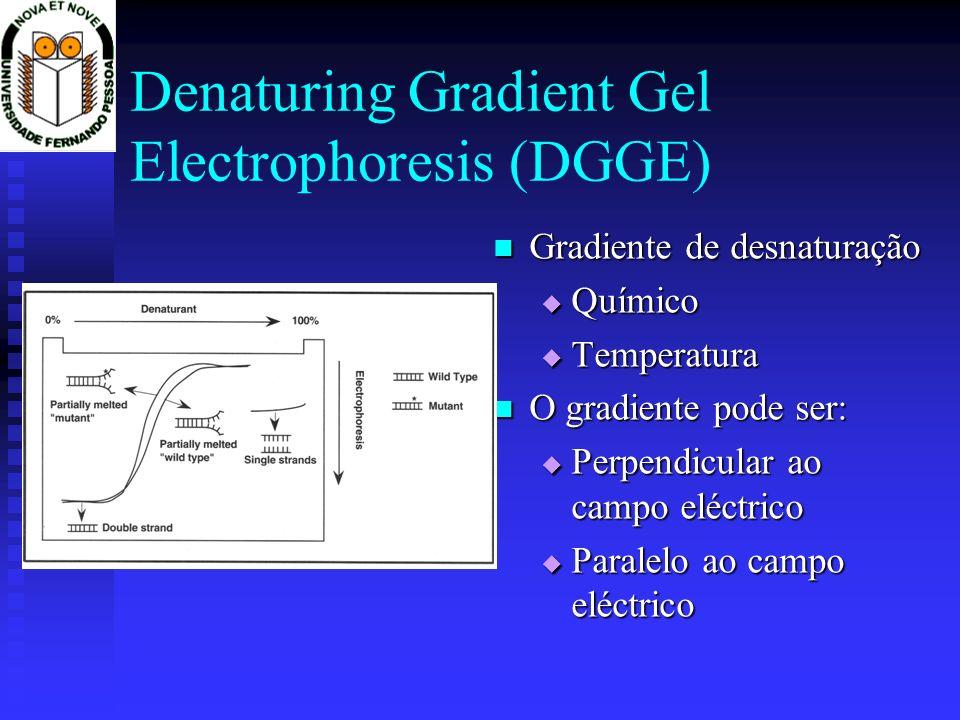 Denaturing Gradient Gel Electrophoresis (DGGE) Gradiente de desnaturação Químico Temperatura O gradiente pode ser: Perpendicular ao campo eléctrico Pa