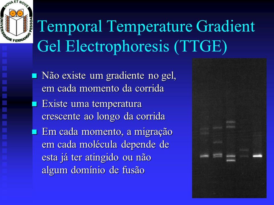 Temporal Temperature Gradient Gel Electrophoresis (TTGE) Não existe um gradiente no gel, em cada momento da corrida Não existe um gradiente no gel, em