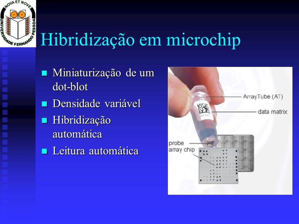Hibridização em microchip Miniaturização de um dot-blot Miniaturização de um dot-blot Densidade variável Densidade variável Hibridização automática Hi