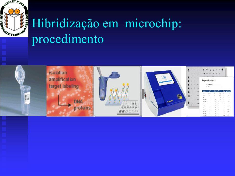 Hibridização em microchip: procedimento