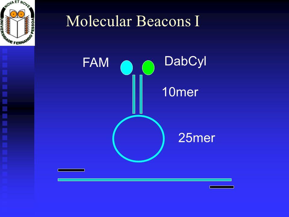 Molecular Beacons I 10mer 25mer FAM DabCyl