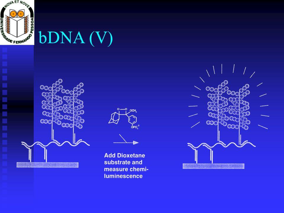 bDNA (V)