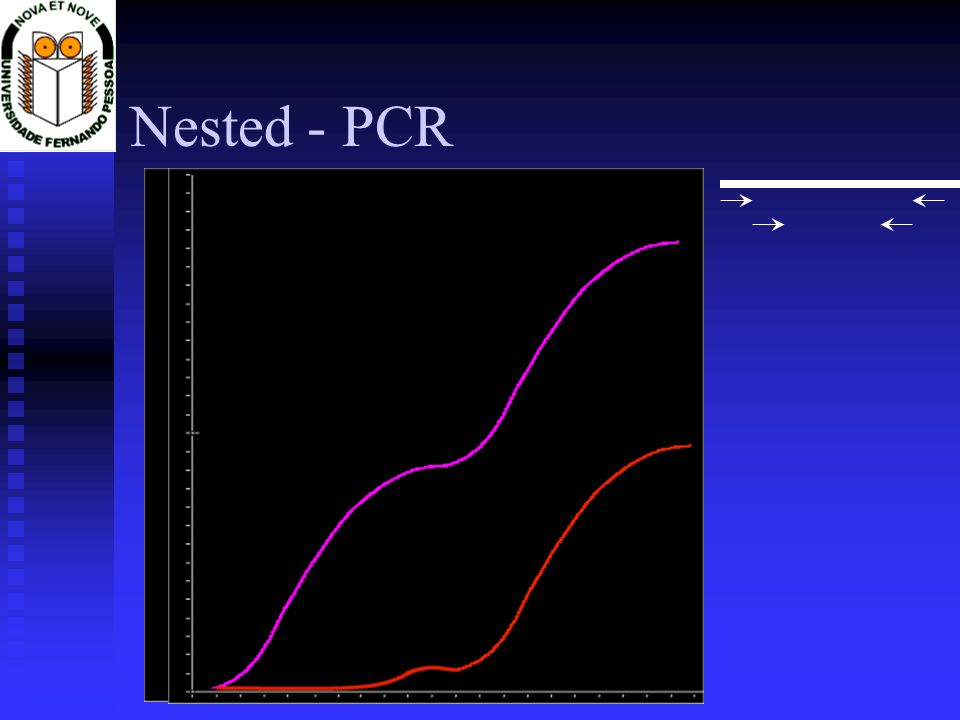 Bordetella pertussis Limite de detecção Limite de detecção ATCC 9797D ATCC 9797D DNA genómico B.