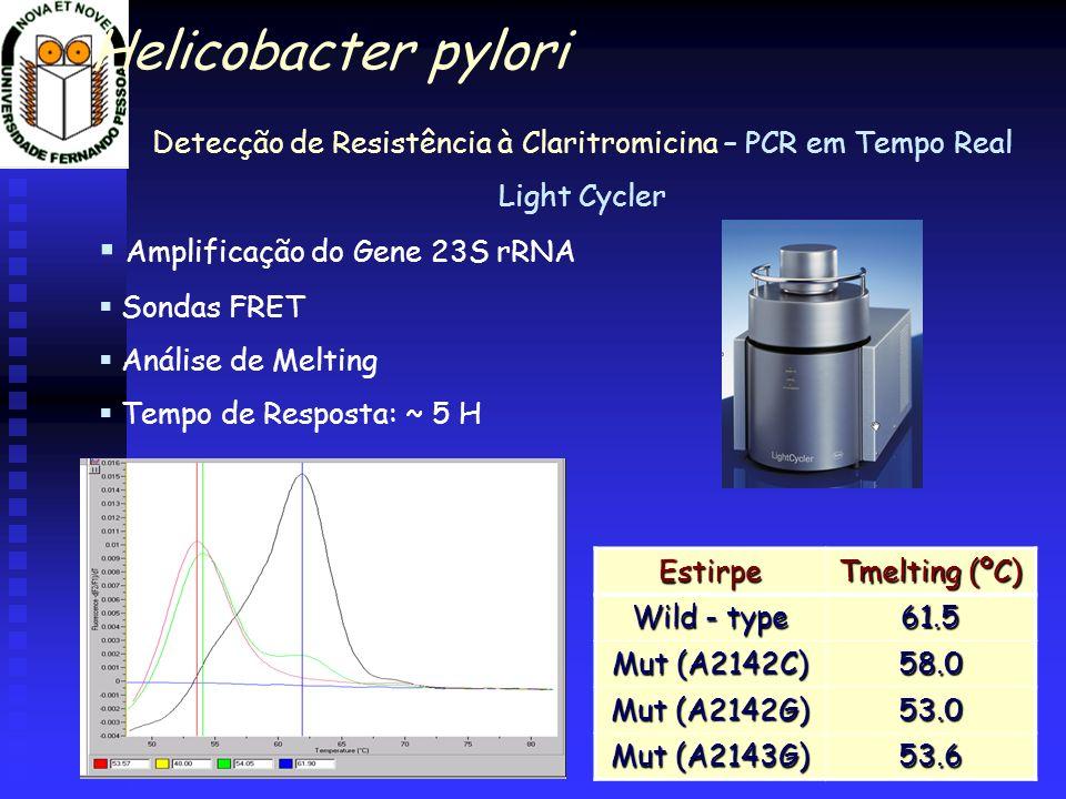 Detecção de Resistência à Claritromicina – PCR em Tempo Real Light Cycler Amplificação do Gene 23S rRNA Sondas FRET Análise de Melting Tempo de Respos