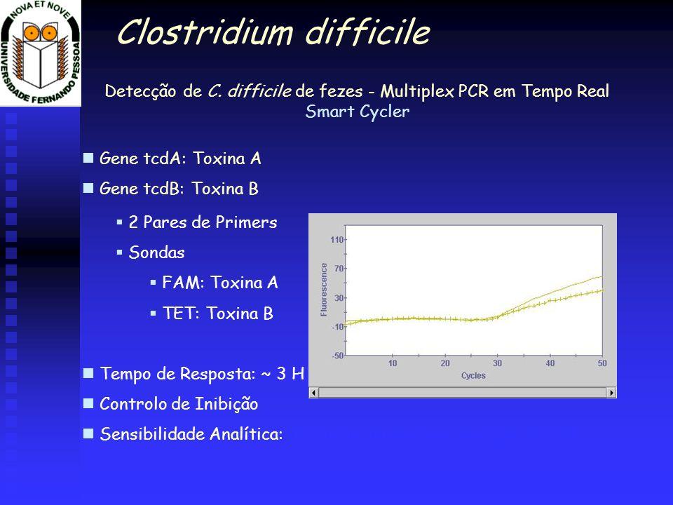 Detecção de C. difficile de fezes - Multiplex PCR em Tempo Real Smart Cycler Gene tcdA: Toxina A Gene tcdB: Toxina B 2 Pares de Primers Sondas FAM: To