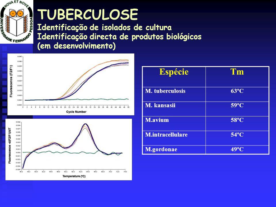 TUBERCULOSE Identificação de isolados de cultura Identificação directa de produtos biológicos (em desenvolvimento) EspécieTm M. tuberculosis63ºC M. ka