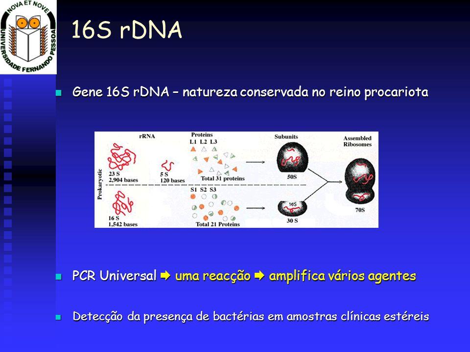 16S rDNA Gene 16S rDNA – natureza conservada no reino procariota Gene 16S rDNA – natureza conservada no reino procariota PCR Universal uma reacção amp