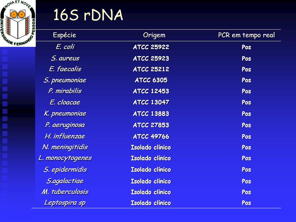 EspécieOrigem PCR em tempo real E. coli ATCC 25922 Pos S. aureus ATCC 25923 Pos E. faecalis ATCC 25212 Pos S. pneumoniae ATCC 6305 Pos P. mirabilis AT