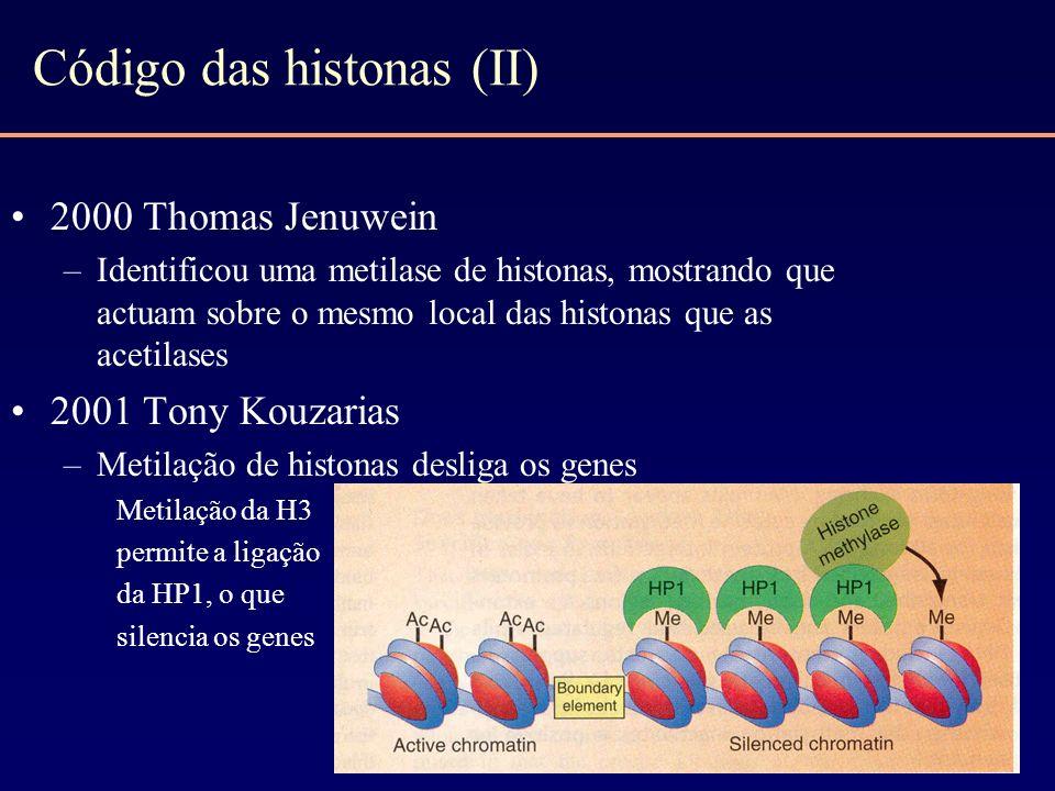 Código das histonas (II) 2000 Thomas Jenuwein –Identificou uma metilase de histonas, mostrando que actuam sobre o mesmo local das histonas que as acet