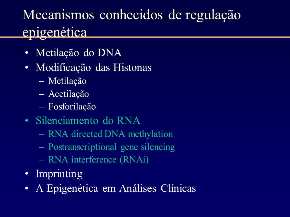 Mecanismos conhecidos de regulação epigenética Metilação do DNA Modificação das Histonas –Metilação –Acetilação –Fosforilação Silenciamento do RNA –RN