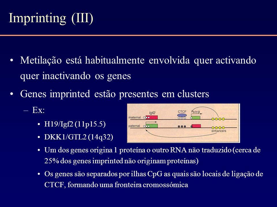 Imprinting (III) Metilação está habitualmente envolvida quer activando quer inactivando os genes Genes imprinted estão presentes em clusters –Ex: H19/