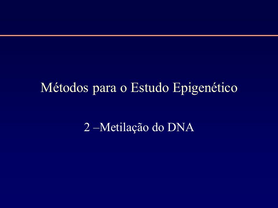 Métodos para o Estudo Epigenético 2 –Metilação do DNA