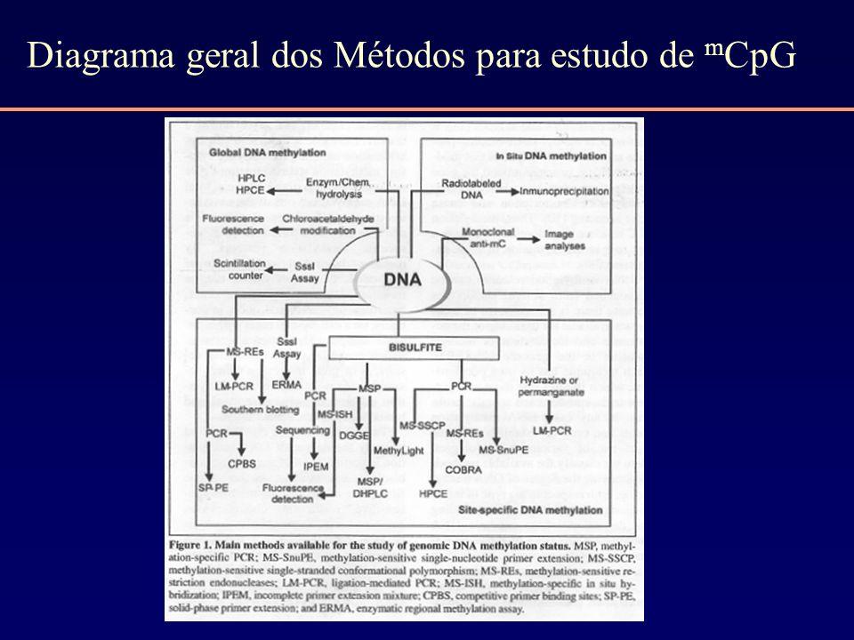 Diagrama geral dos Métodos para estudo de m CpG