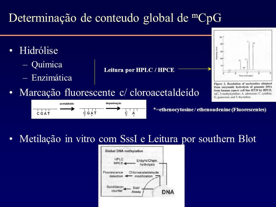 Determinação de conteudo global de m CpG Hidrólise –Química –Enzimática Marcação fluorescente c/ cloroacetaldeído Metilação in vitro com SssI e Leitur