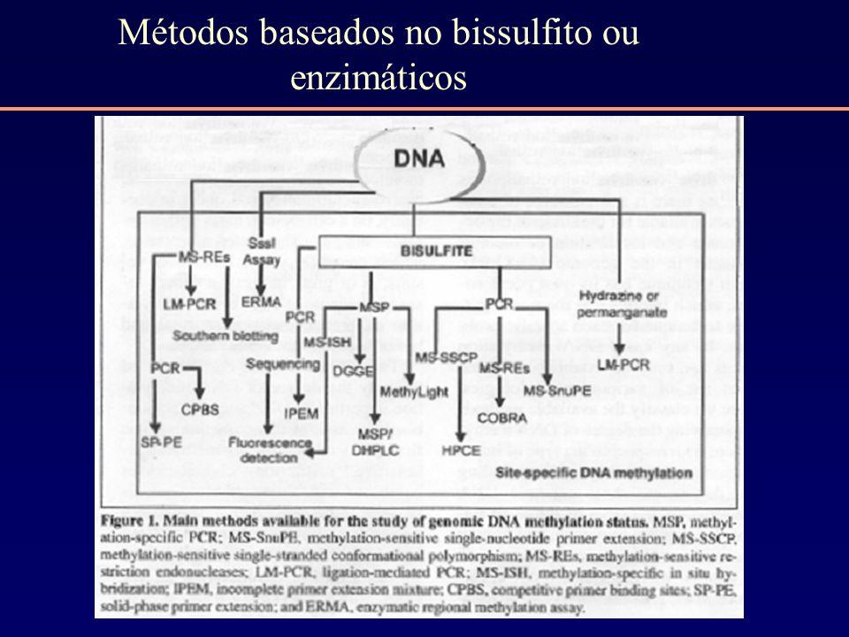 Métodos baseados no bissulfito ou enzimáticos
