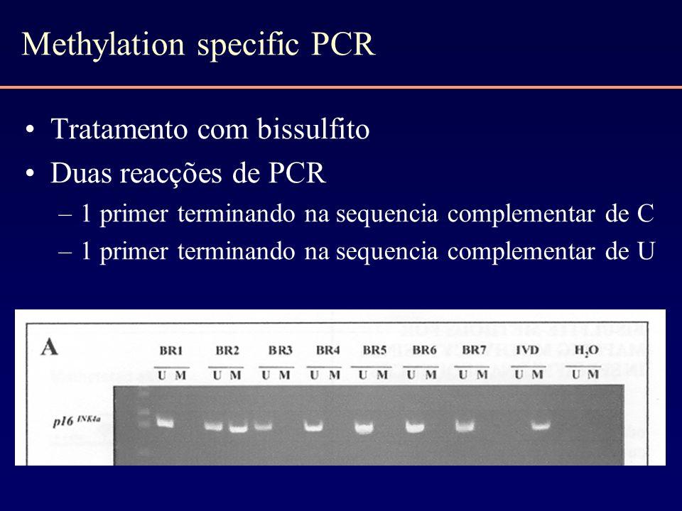 Methylation specific PCR Tratamento com bissulfito Duas reacções de PCR –1 primer terminando na sequencia complementar de C –1 primer terminando na se
