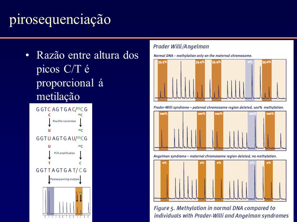 pirosequenciação Razão entre altura dos picos C/T é proporcional á metilação